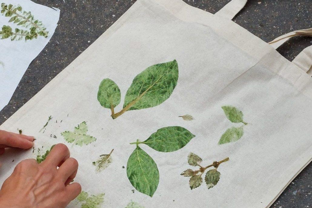 Cours Oasis ecole Keller nature empreintes végétales paris été animations film acides animés associations famille paris gratuit projet FEDER européen nature parc activités